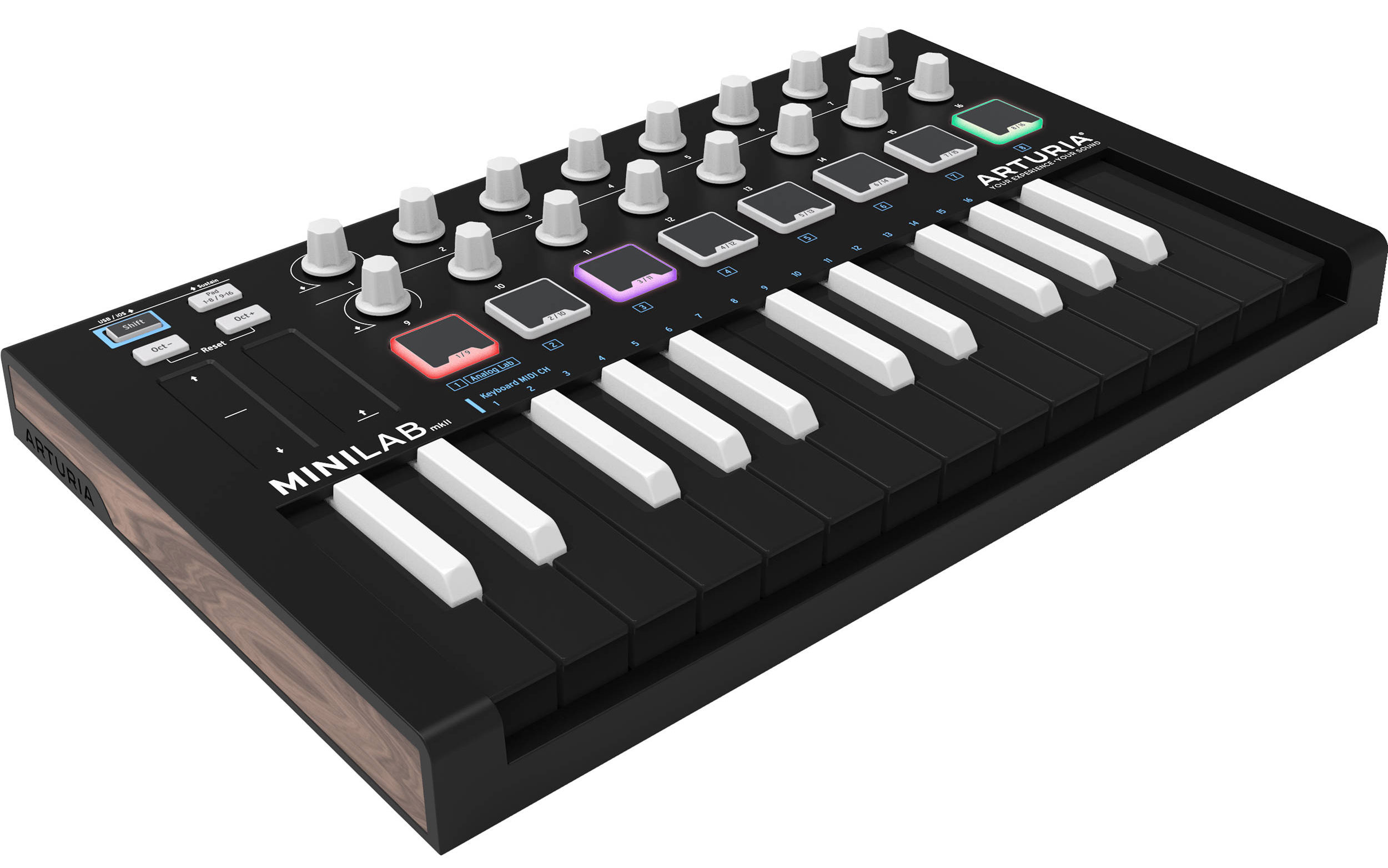 Image result for Arturia Minilab MkII Inverted 25